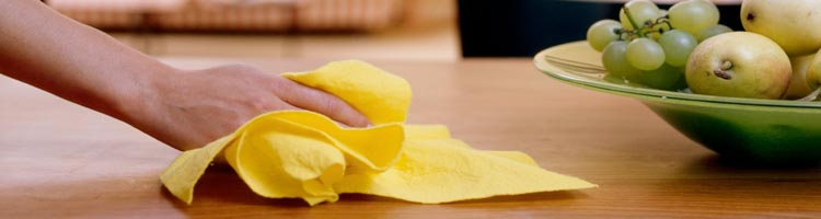 Domestic cleaning lanarkshire
